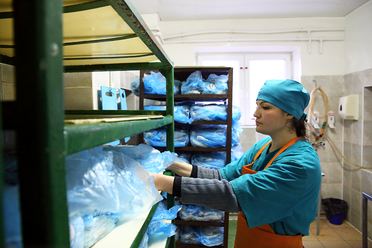 Работница цеха Марина готовит рыбу к разморозке. Фото предоставлено ООО