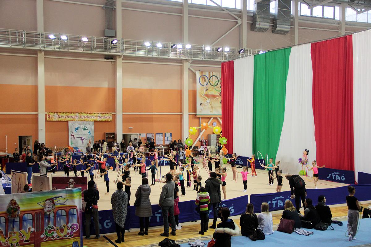 Разминка гимнасток. Фото: Юрий ПИВОВАРЧИК