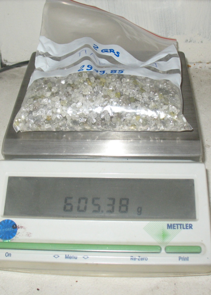Россиянин вез через белорусско-польскую границу 9 кг алмазов под видом гравия для аквариума