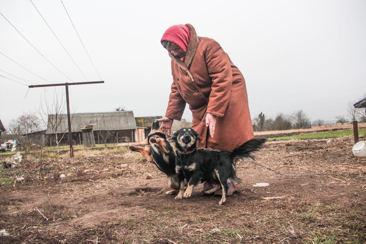 Пенсионерка Зинаида Цуприянчик утверждает, что ее собаки не способны напасть на человека. фото: Юрий Пивоварчик