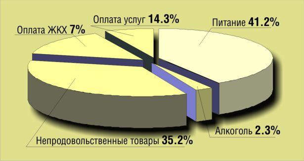 Куда уходят деньги белорусской семьи