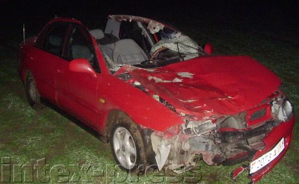 В результате столкновения вечером 13 ноября «мицубиси» с внезапно выбежавшей на проезжую часть лошадью  у автомобиля снесло крышу, а водитель с травмами был доставлен в больницу
