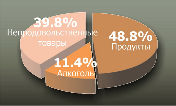Диаграмма № 3. На что тратили горожане в 2009 г.