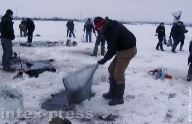 Рыбы на торфакар'еры – чэрпаць  не вычарпаць