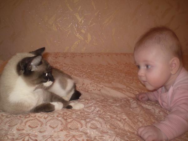 Надежда Янковская и кошка Ася. Познакомимся