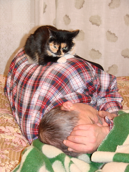 Хозяин Григорий и кошка Мурка. «Я тебя прикрою лапкой, спи, хозяин, сладко-сладко»