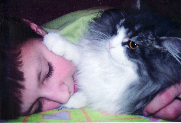 Анастасия Кузьмич. Женька и Кота. Просыпайся, в школу пора
