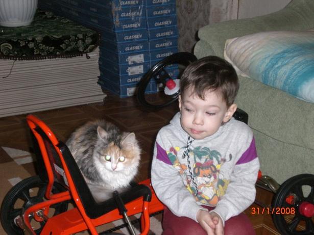 Кошка Алиса и Ваня Жанкевич. Может, договоримся?