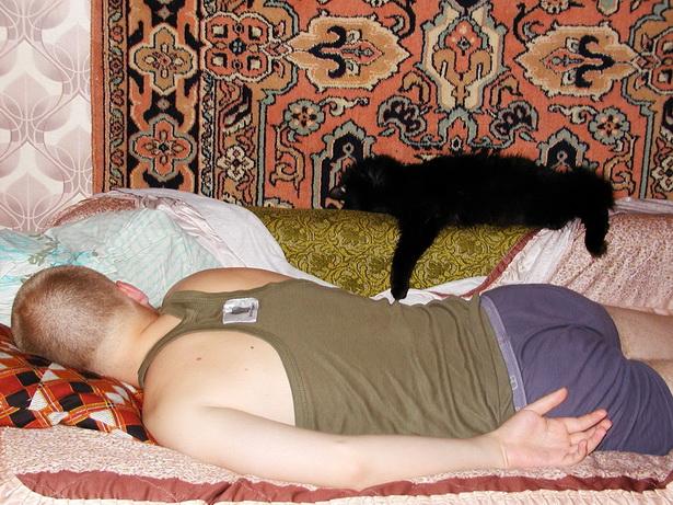 Серега Грицацуев и кот Баскервилей