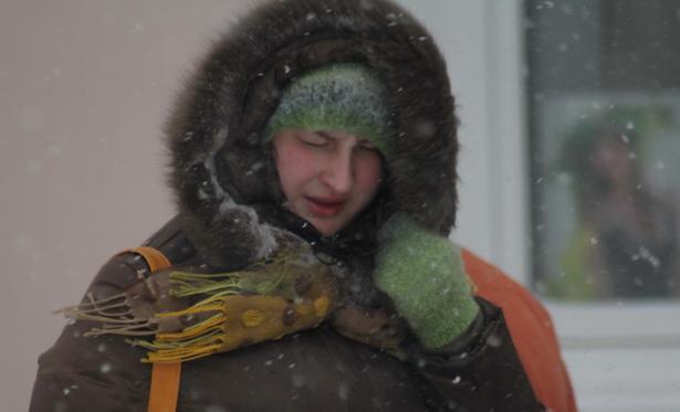 Сильнейшие порывы ветра в Барановичах достигали 23 метров в секунду