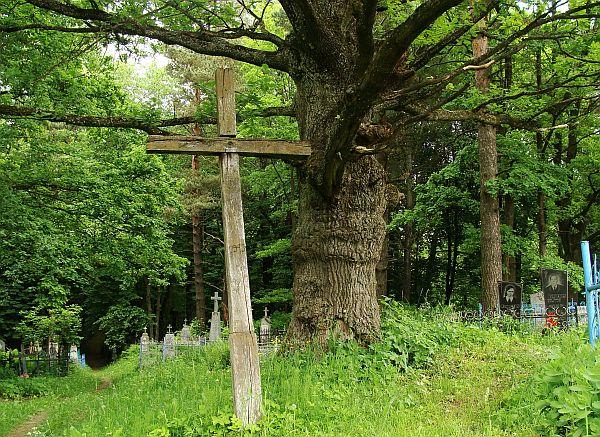 Крыж на Варанчанскіх могілках у памяць забітых партызанамі гаспадароў мясцовай сядзібы. Фота -- Алесь Гізун