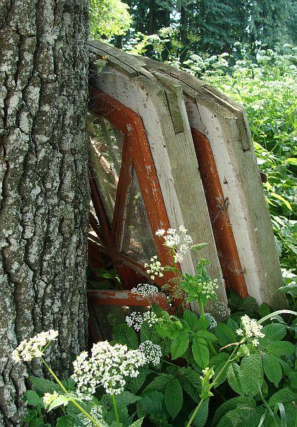 Старыя вокны касцёла Святой Ганны ў Варончы ляжаць пакінутыя пад дубам адразу за касцёлам. Фота -- Алесь Гізун