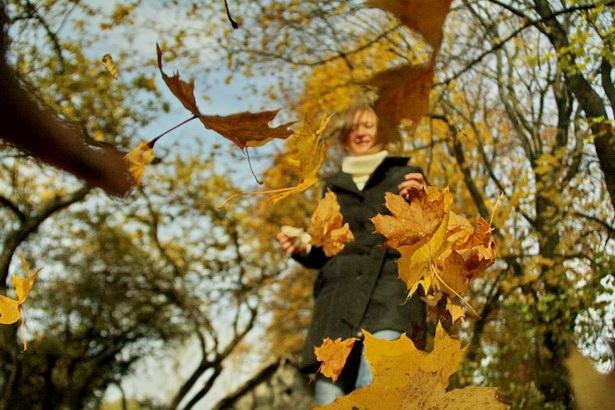 Падарожжа ў залатую восень