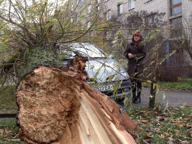 Елена Воробей планирует доказать, что мва находилась в аварийном состоянии. Фото Александра Трипутько