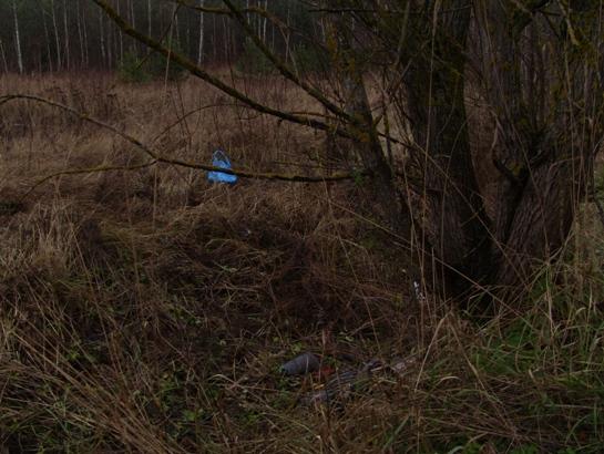 Место аварии возле пос. Кабушкина. Фото Александра Трипутько