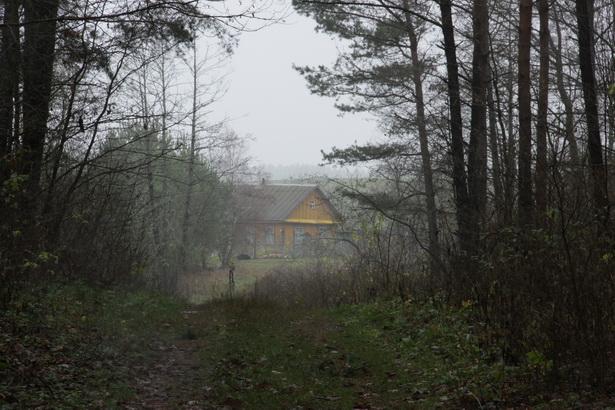 Сямейная магіла Данількевічаў на могілках у вёсцы Міхнаўшчына.