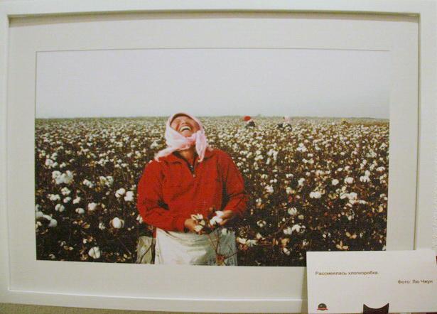 Рассмеялась хлопкоробка - одна из фотографий, представленных в экспозиции посольства КНР