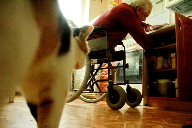 Днем Богуславу составляет компанию его кошка Мурка. Фото Intex-press/Людмила Прокопова