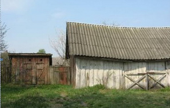 Объект, выставленный на продажу по начальной цене в 130 тысяч рублей, - уборная в Гомельской области