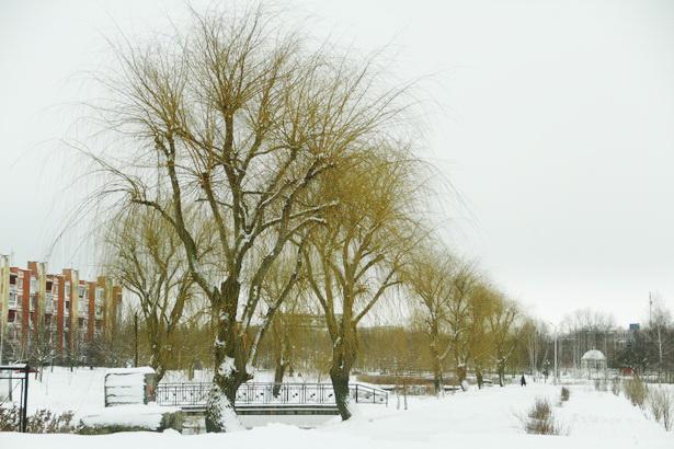 Барановичи после снегопада. 16 января. Фото INTEX-PRESS