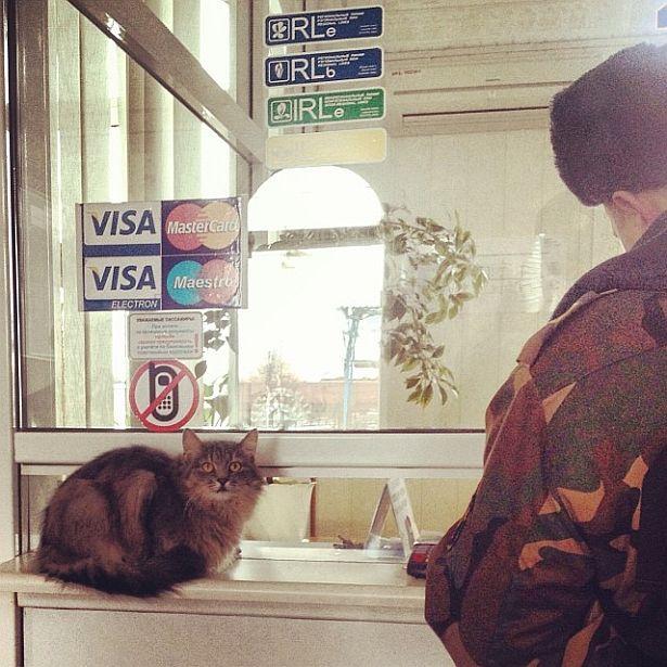 @vavyorka  Каса на вакзале Баранавічы-Цэнтральныя