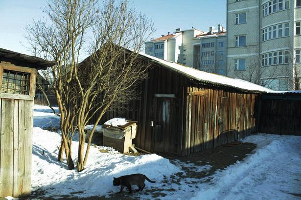 Построенные домики для котов во дворике домов по улице Лисина. Барановичи