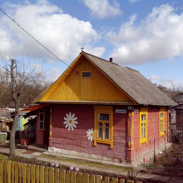 @intex-press  Дом з рамонкамі.