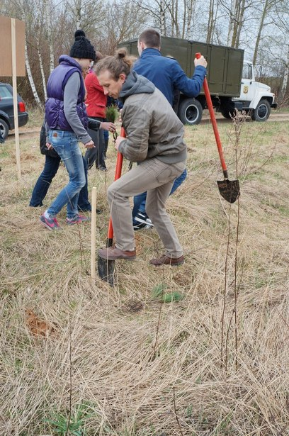 Помогали садить кедры волонтеры из восьми городов Беларуси. Фото из архива участников.