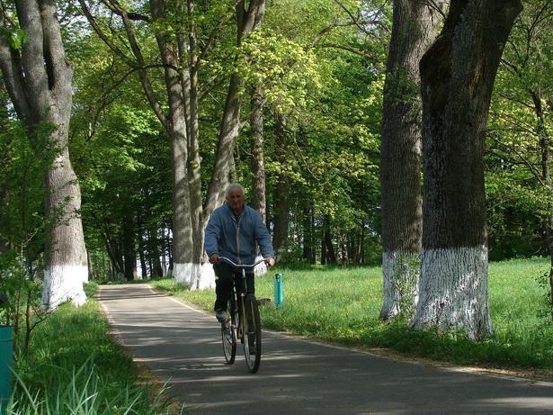 Год таму Вольнаўскі парк быў запісаны ў дзяржаўны спіс гісторыка-культурных каштоўнасцяў.