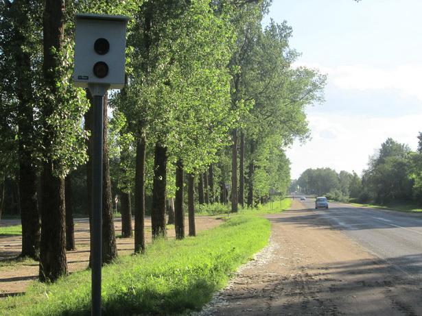 Камера фотофиксации на дороге Кобрин-Столбцы, в бывшей д. Звездная. фото Натальи Семенович