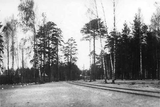 Вид железнодорожной ветки на территории Ставки Верховного Главнокомандующего.