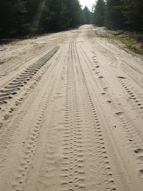 Пясчаная пустэльня – вынік меліярацыі. Фота Віктара ШЭРЫШАВА