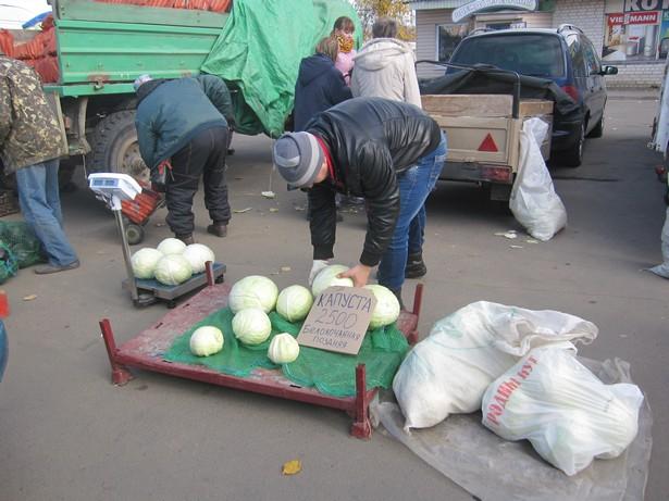 На ярмарке можно было найти овощи разных сортов. Фото: Ольга ШИРОКОСТУП