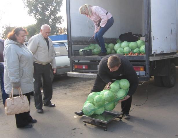 Килограмм капусты стоит наравне с морковкой – 2,5 тысячи рублей. Фото: Ольга ШИРОКОСТУП
