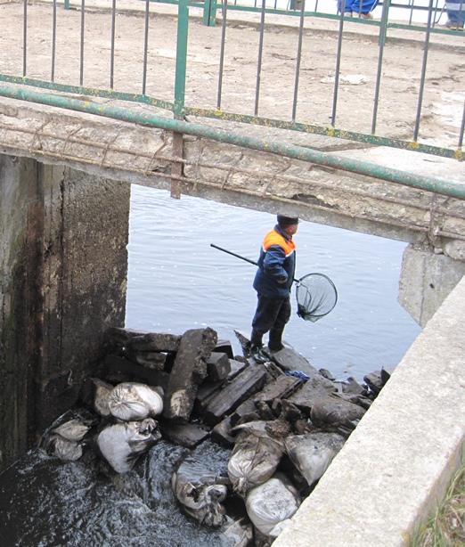 Рыба не могла уйти по руслу, так как реку перегородили мешками и камнями. Фото: Татьяна НЕКРАШЕВИЧ.