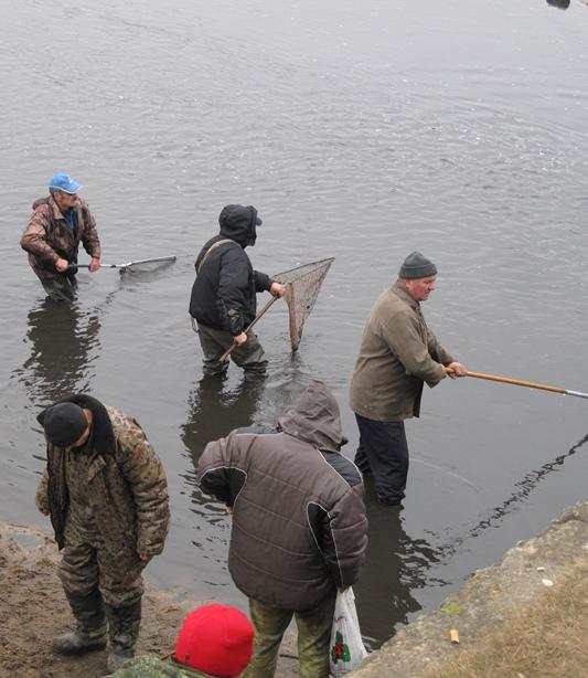 У рыбы не было шансов. Фото: Татьяна НЕКРАШЕВИЧ.