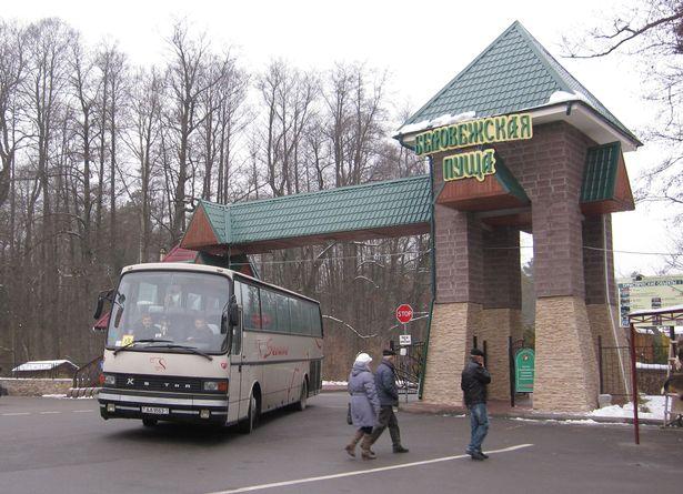 Заехать на территорию Беловежской пущи можно только на экскурсионном транспорте. Фото: Ольга ШИРОКОСТУП