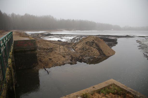 Русло реки Мышанка. Фото: Дмитрий МАКАРЕВИЧ