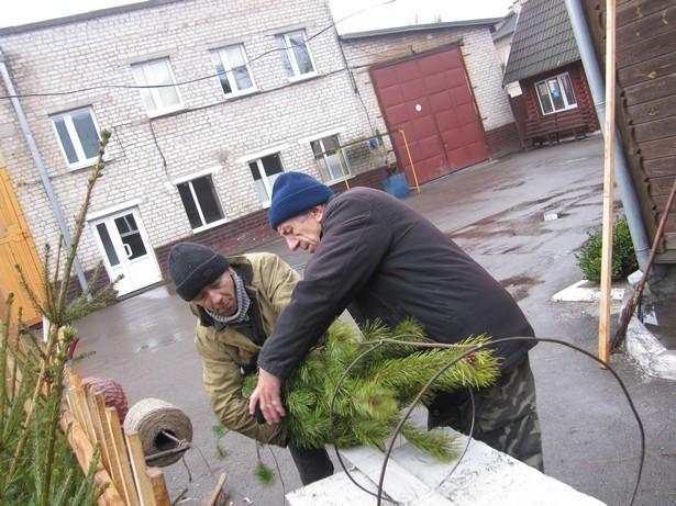 «Упаковка» дерева обойдется в 10 тысяч рублей. Фото: Ольга ШИРОКОСТУП