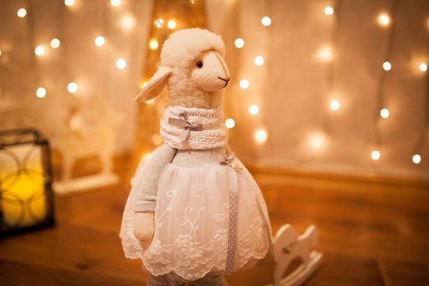 Своих овечек Анна Кабушко одевает в разные наряды. Фото из архива автора.