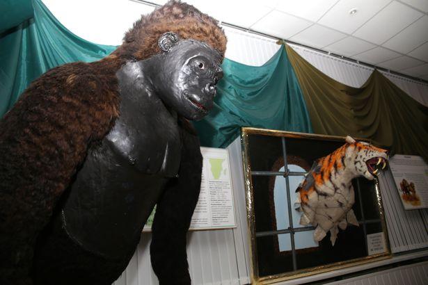 Муляж гориллы в других городах привлекал особое внимание публики