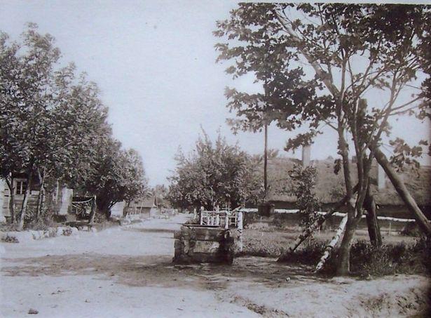 Вясковая вуліца ў в. Гацішча, чэрвень 1917