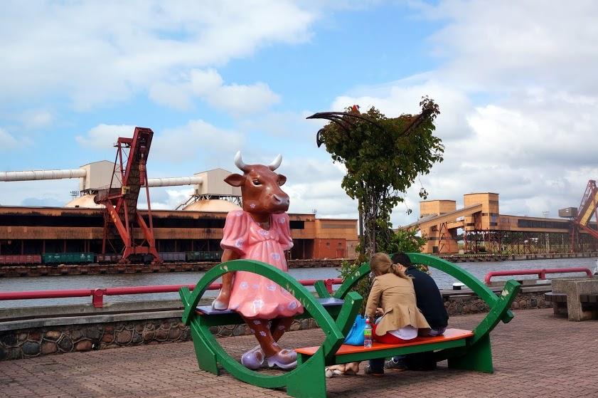 Корова в Латвии. Фото из соцсетей.