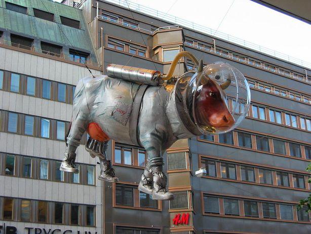 Корова в скафандре. Фото из соцсетей.