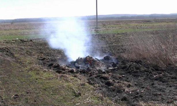 За выжигание сухой растительности составлено уже два протокола