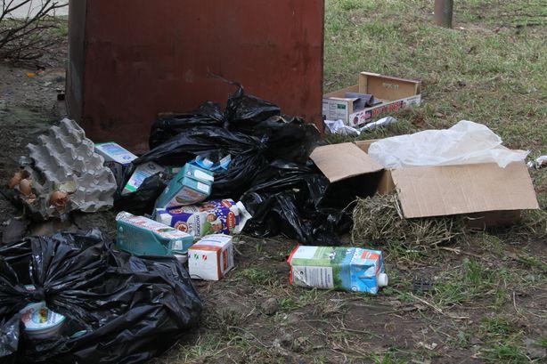 Мусорный контейнер возле магазина Родная сторона на ул. 50 лет ВЛКСМ. Фото: Александр ТРИПУТЬКО