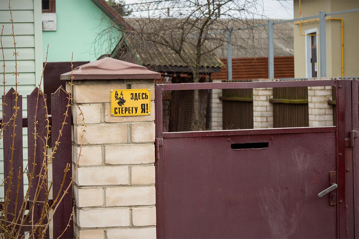 Злые собаки в Барановичах. Фото: Юрий ПИВОВАРЧИК
