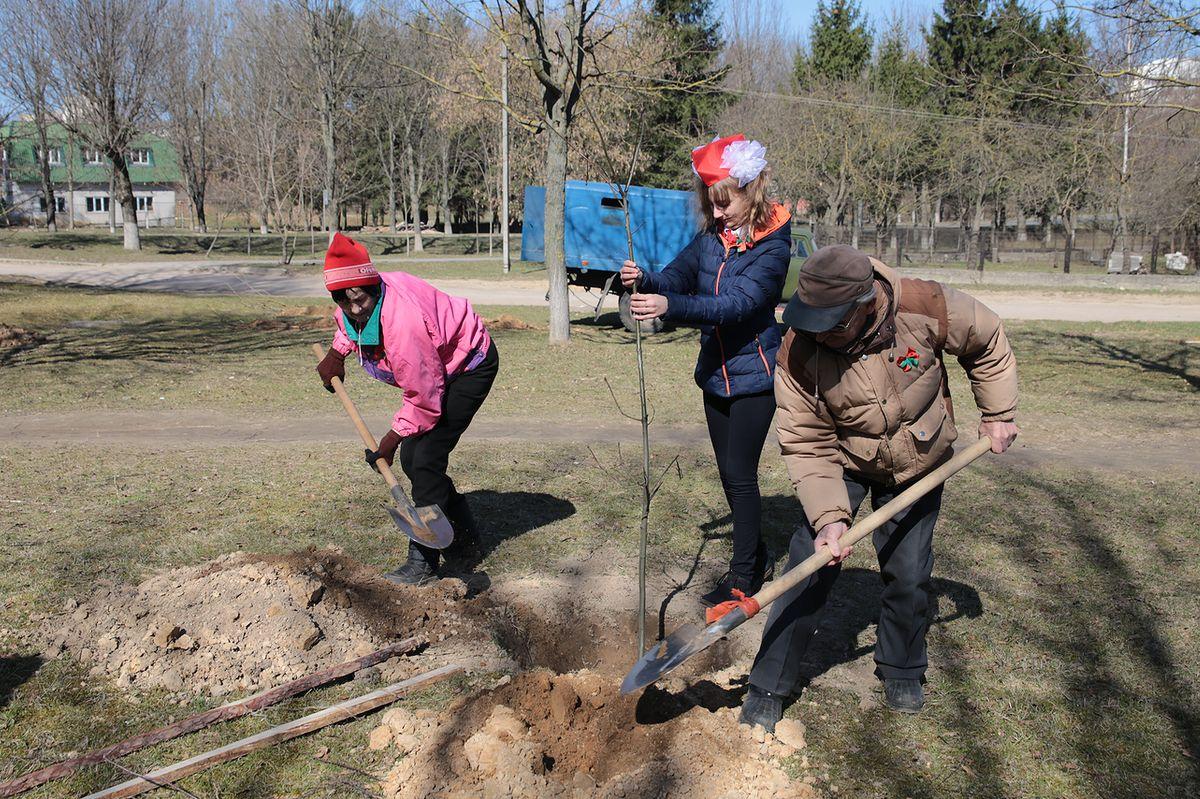 Ветераны и пионеры высадили новую аллею в честь 70-летия Победы