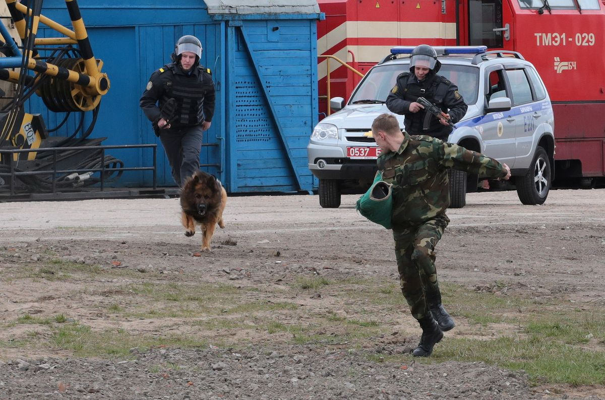 «Террорист», пытавшийся сбежать, был пойман специально обученной собакой. Фото: Дмитрий МАКАРЕВИЧ
