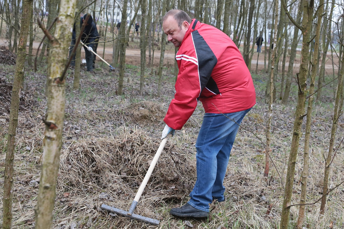 Вместе с другими чиновниками председатель Барановичского горисполкома Юрий Громаковский трудился на обваловке лыжероллерной трассы.